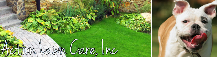 Action Lawn Care, Inc