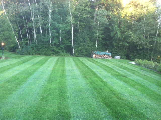Lawn Care Moultonboro NH
